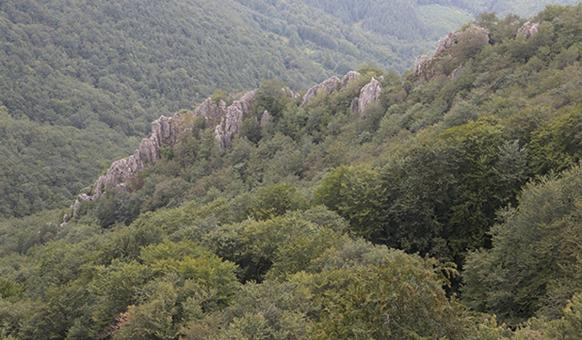 Bulgarka Nature park