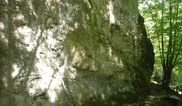 "Екопътеки, Маршрути, Водопад Скока, Екопътека ""Под пръските на водопада"", Тетевен, Забележителности в България, Тетевенски балкан"